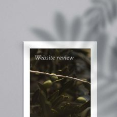 Website Review Wedding Photographer