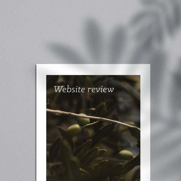 Website Review Wedding Photographer